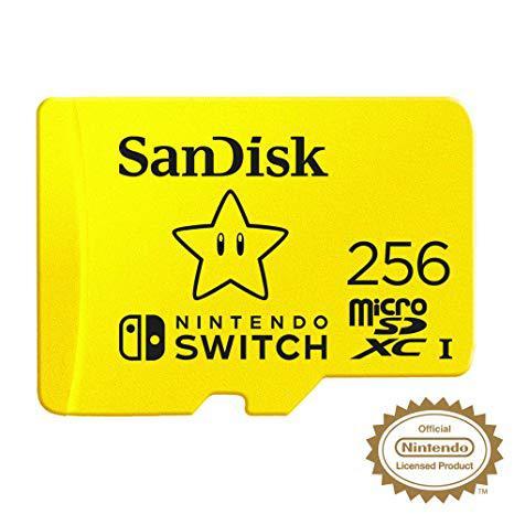 256 GB Micro SD Card